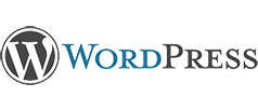 Spesialisasi dalam Wordpress Technology